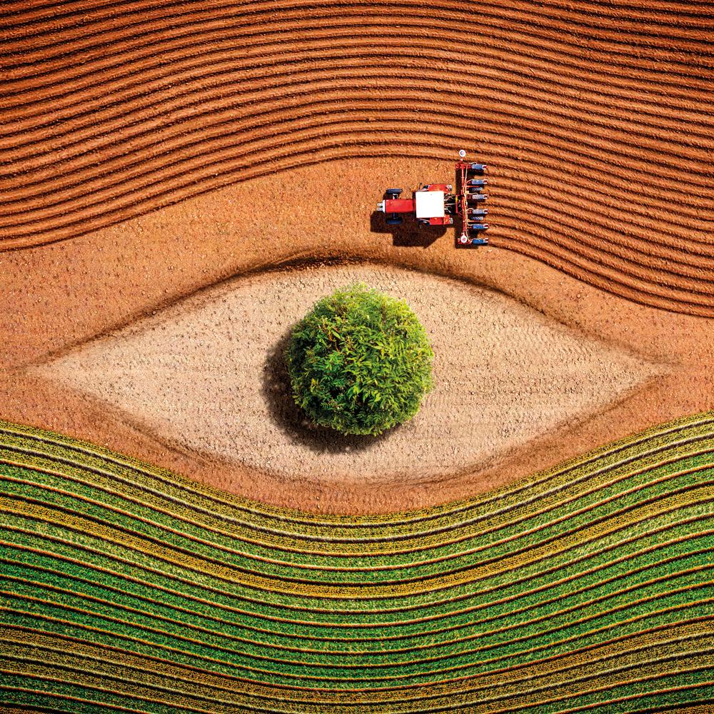 Comunicazione Seedfuture